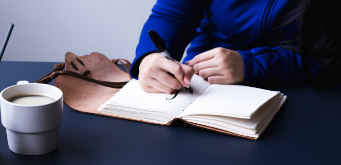beginner's-guide-to-writing-an-essay